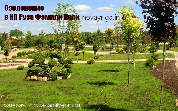 руза фэмили парк фото