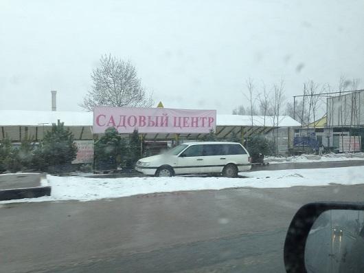 Дмитровское шоссе рассада 43